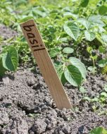 Plant / Garden Seed Markers